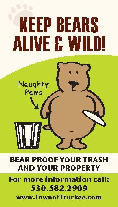 Bear Brochure Front